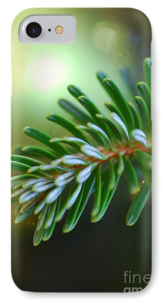Up Close Evergreen Branch IPhone Case