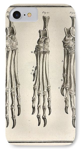 Variation Of Dog Feet, 1755 IPhone Case