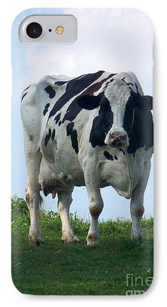 Vermont Dairy Cow IPhone Case