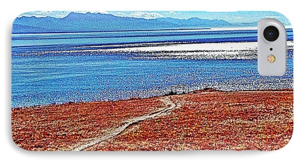 View From The Battery At Fort Ebey IPhone Case