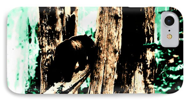 Vintage Bear In The Mount Rainier Forest Early 1900 Era... IPhone Case