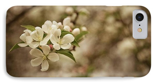 Vintage Crabapple Blossom IPhone Case