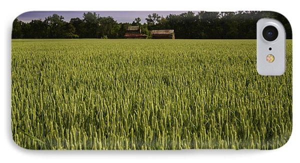 Virginia Wheat Field IPhone Case