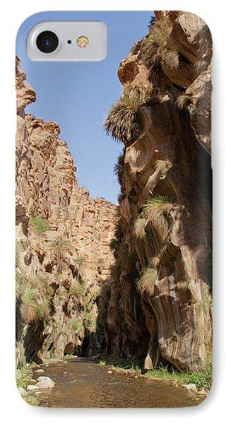 Wadi Hassa IPhone Case