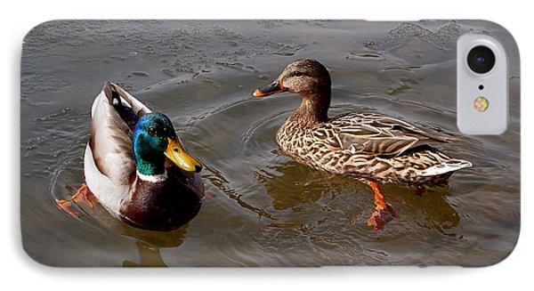 Wading Ducks IPhone Case