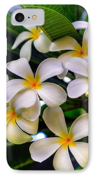 Wailea Plumerias IPhone Case