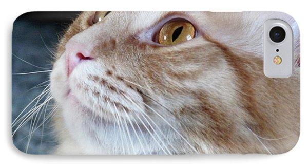 Walter The Cat IPhone Case