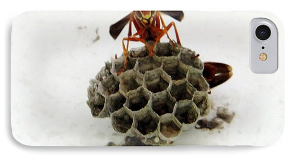 Wasp IPhone Case