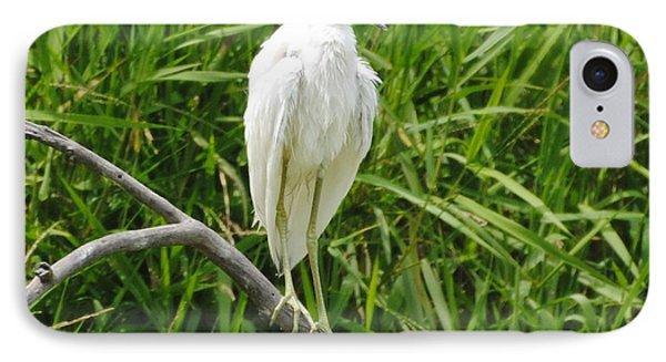 Watchful Heron IPhone Case