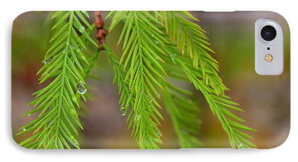 Water Droplets Cypress Foliage IPhone Case