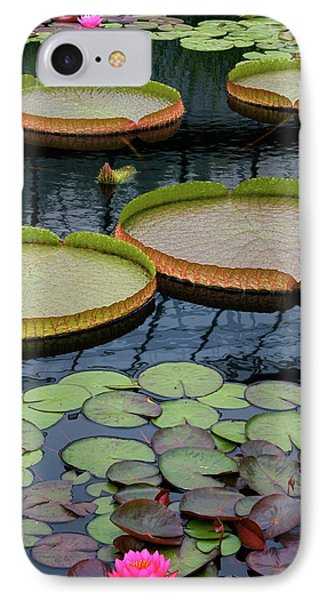 Waterlilies And Platters 2 IPhone Case