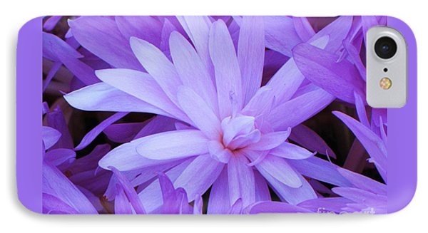 Waterlily Crocus IPhone Case