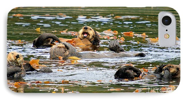 We Otter Be In Pictures IPhone Case