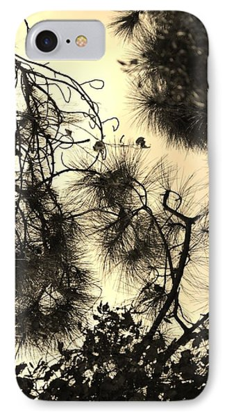 Whimsical Study IPhone Case