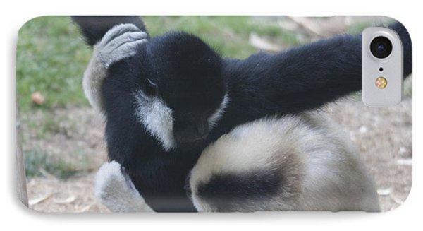 White-cheeked Gibbon - 0012 IPhone Case