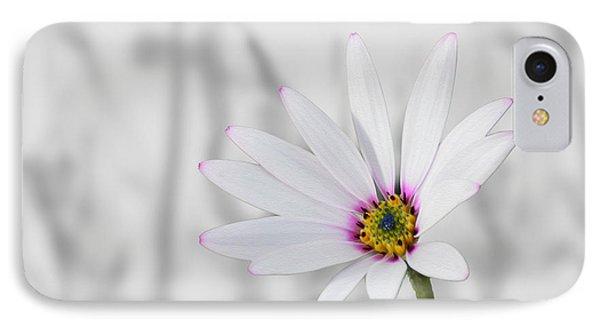 White Daisy Bush IPhone Case