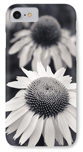 White Echinacea Flower Or Coneflower IPhone Case