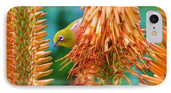 White-eye On Deer-horn IPhone Case