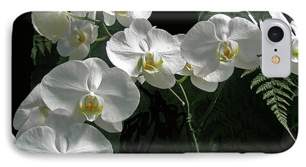 iPhone 8 Case - White Moth Orchid Phalaenopsis And Ferns by Mother Nature