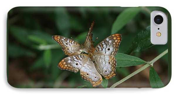 White Peacock Butterflies IPhone Case