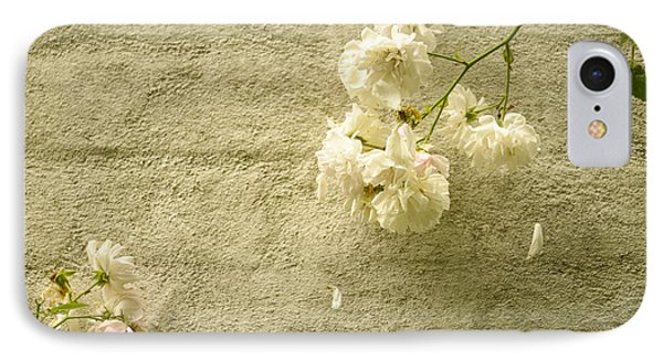 White Roses On A Wall IPhone Case