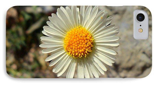 White Wild Flower IPhone Case