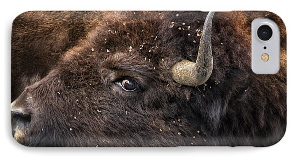 Wild Eye - Bison - Yellowstone IPhone Case