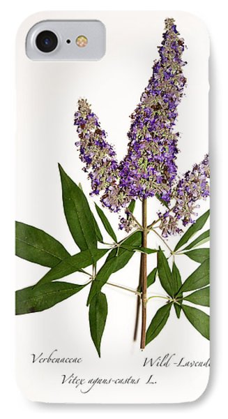 Wild-lavender 1 IPhone Case