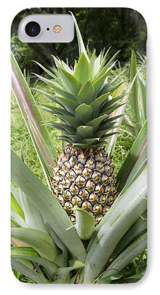 Wild Pineapple IPhone Case