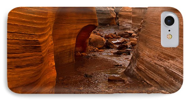 Willis Creek Slot Canyon IPhone Case
