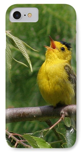Wilson's Warbler IPhone Case