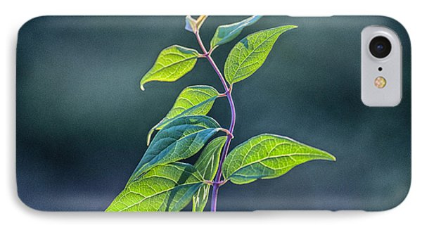 Winding Leaves IPhone Case