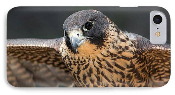 Winged Portrait IPhone Case