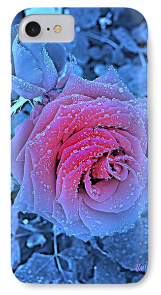Winter-rose IPhone Case