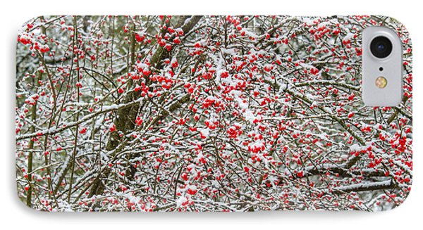 Winterberry During A Snowfall IPhone Case
