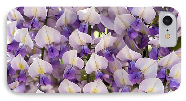 Wisteria Floribunda Domino IPhone Case