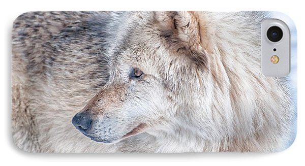 Wolf In Disguise IPhone Case