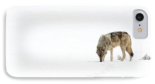 Wolf Journey IPhone Case