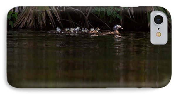 Wood Duck And Ducklings IPhone Case