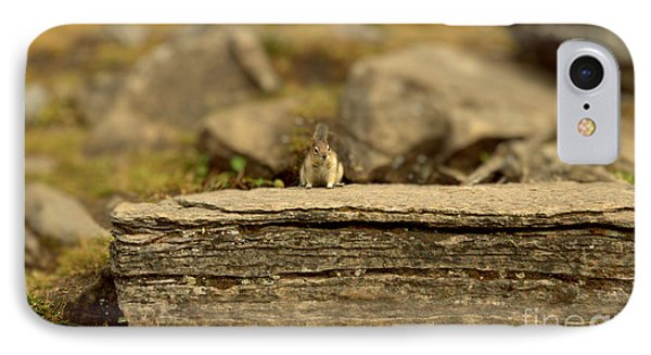 Woodland Critter IPhone Case