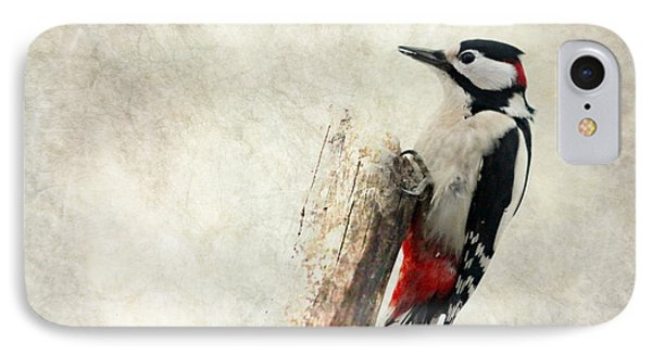 Woodpecker In Nature IPhone Case