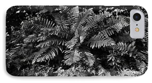 Wood's Ferns  IPhone Case