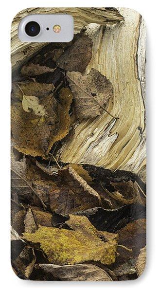 Woodwork 4 IPhone Case