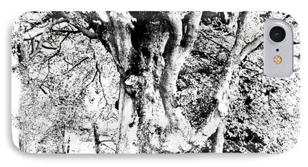 World Tree IPhone Case