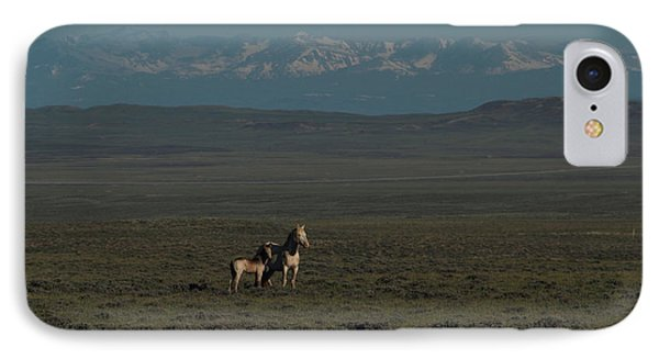 Wyoming Beauty IPhone Case