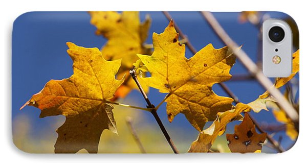 Yellow Fall Leaves IPhone Case