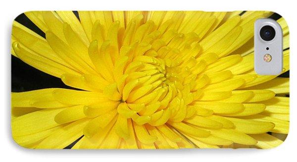 Yellow Flower Closeup IPhone Case