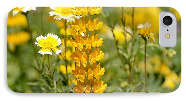 Yellow Flowers In The Meadow IPhone Case