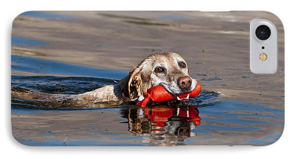 Yellow Labrador Retriever, Retrieving IPhone Case