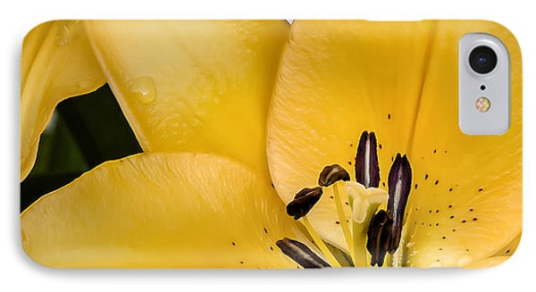 Lily iPhone 8 Case - Yellow Lily by Scott Norris